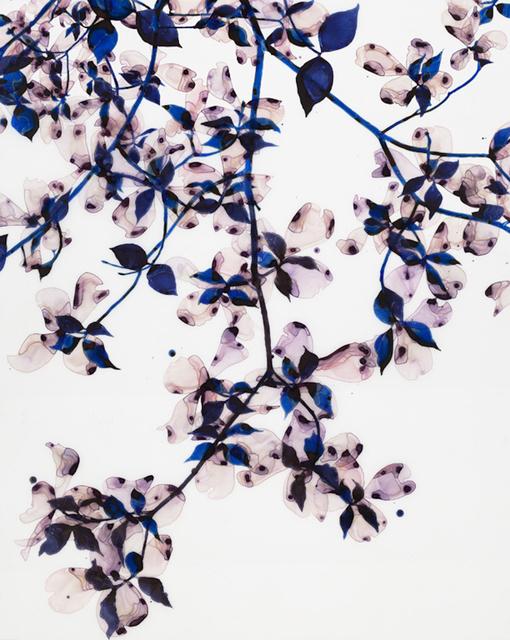 , 'Ghost Blossom,' 2015, ODETTA