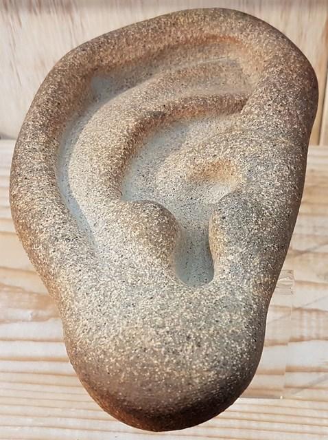 Richard Notkin, 'Ear (large size)', 2010-2017, Cerbera Gallery