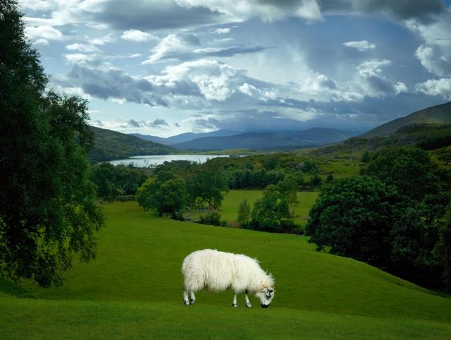 , 'Quigley, County Kerry, Ireland,' 2012, Burnet Fine Art & Advisory