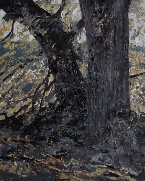 Herald Nix, 'Untitled (Elm Tree #1)', 2018, Wilding Cran Gallery