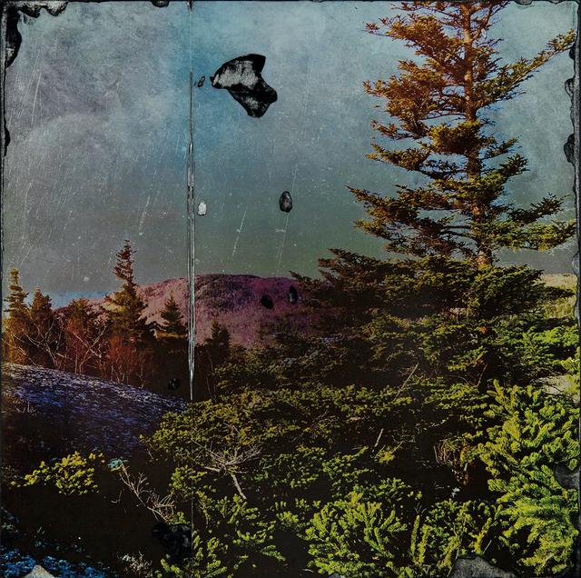 , 'Moon Tone,' , Dowling Walsh