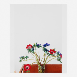 Wolfgang Tillmans, 'Anenome,' 2003, Wright: Prints + Multiples (January 2017)
