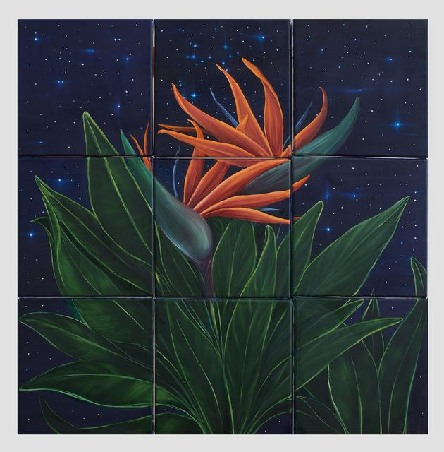 , 'Birds of Paradise ,' 2018, Susan Eley Fine Art