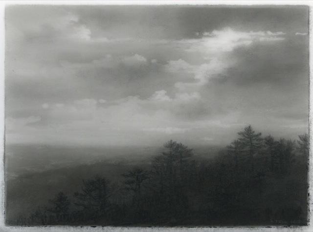 , 'Pine ridge,' 2018, DANESE/COREY