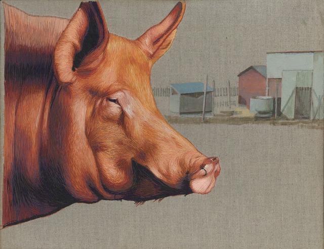 Mary Snowden, 'Hog', Gail Severn Gallery