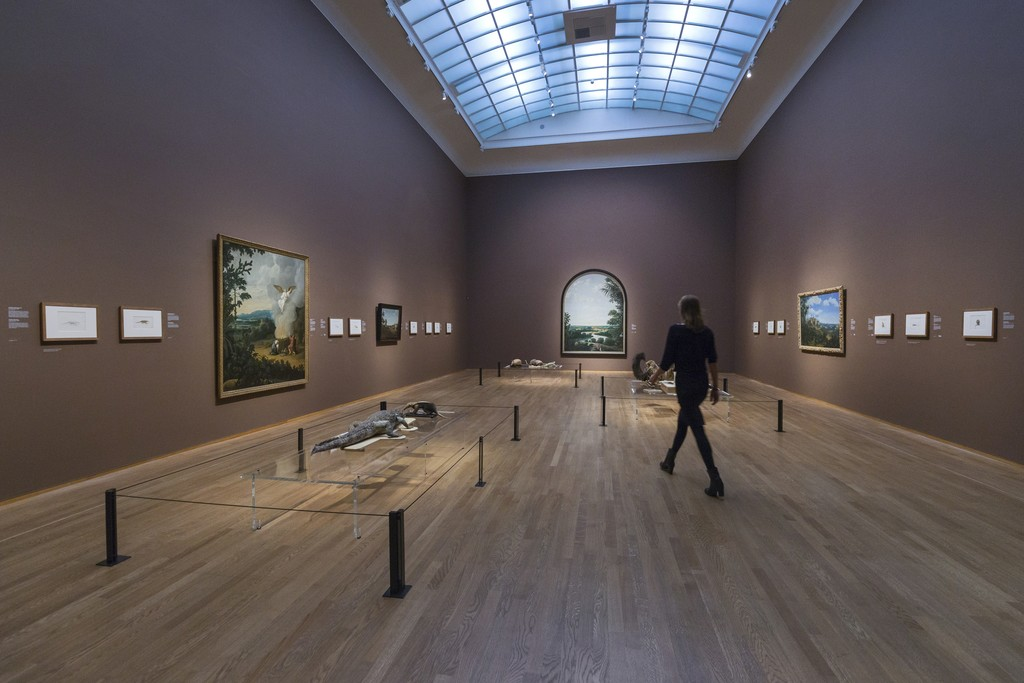 "Installation view, ""Frans Post"" at Rijksmuseum. Photo Olivier Middendorp"