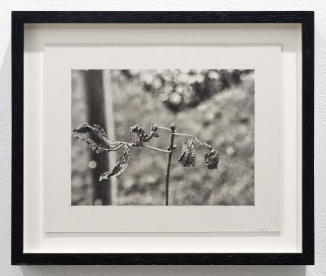 , 'Saltburn Walk I,' 2006, Lora Reynolds Gallery