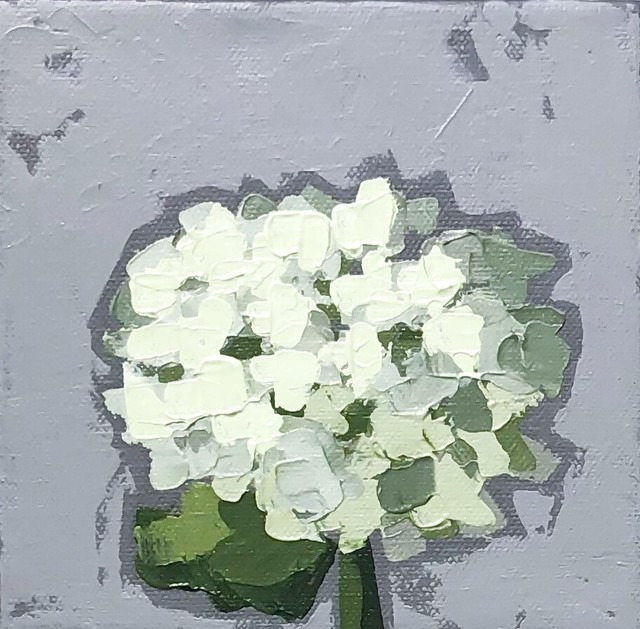 Christie Younger, 'Little Green Hydrangea No. 2', 2019, Shain Gallery