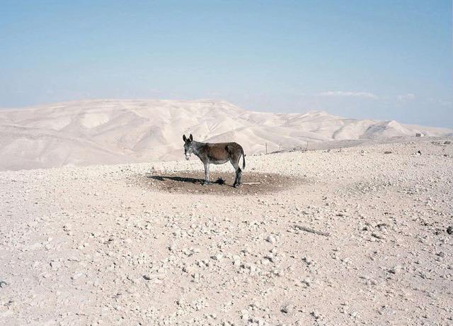 , 'Bethlehem,' 2012, Dio Horia