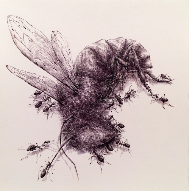 , 'Insects #1,' 2014, Gallery NAGA