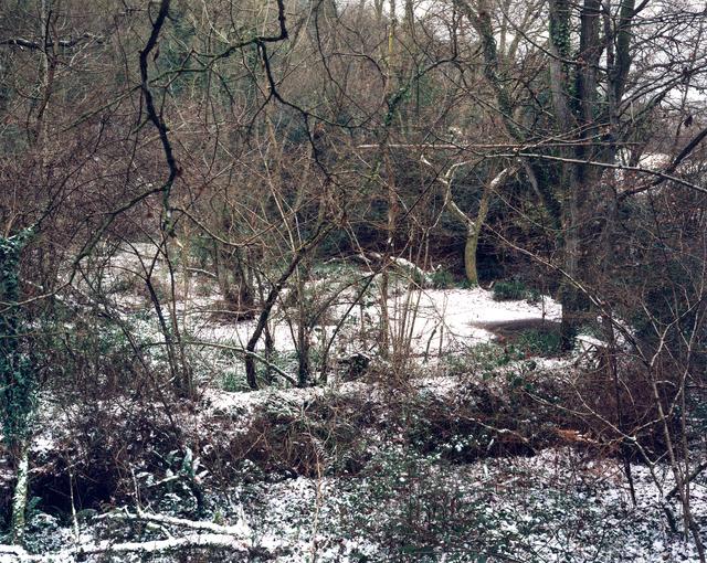 Jem Southam, '9 January 2003', Photography, Chromogenic dye coupler print, Robert Mann Gallery