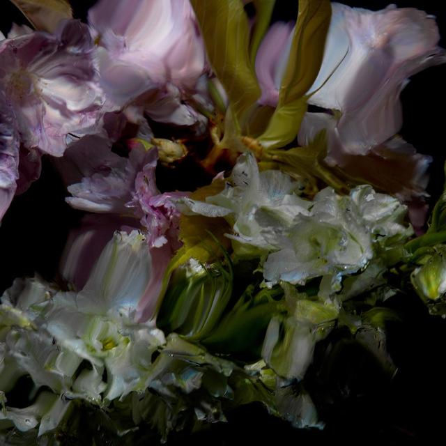 , 'Floral Study [0498],' 2012, Dellasposa