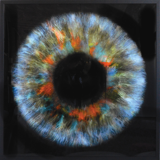 Daniel Gastaud, 'Iris Flowers', 2017, Eden Fine Art