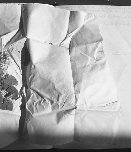 , 'Diary/Landscape 105,' 1978, Galleria Raffaella Cortese