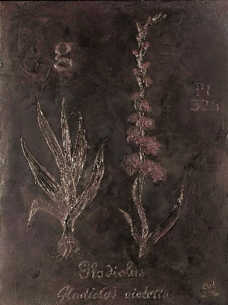 , 'Gladiolus ,' 2016-2017, Exhibit 320