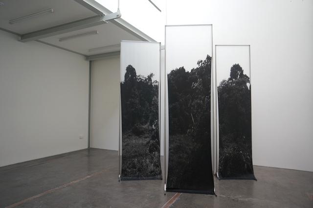 , 'Copse,' 2014, Galerie Steph