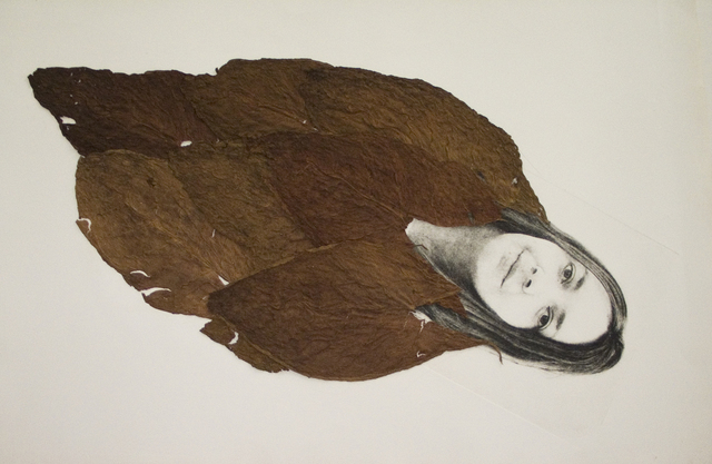 , 'Hoja de Tabaco (Tabaco Leaves),' 2008, Pizzuti Collection