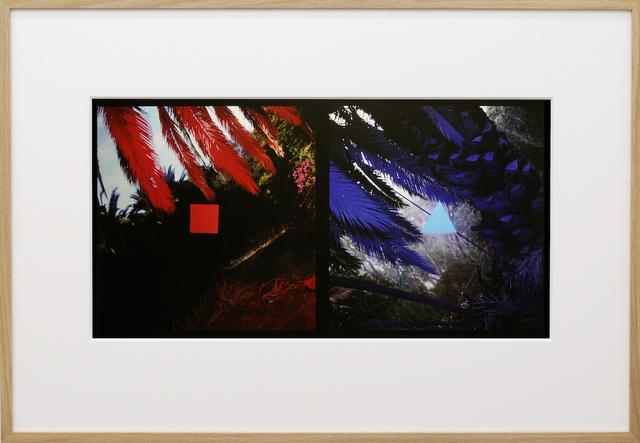 , 'Despite Intensions (84DPT1),' 1983, Pedro Alfacinha