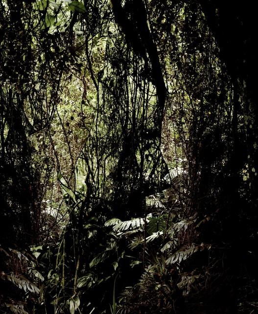 , 'Maranguara,' 2011, Galería Joan Prats