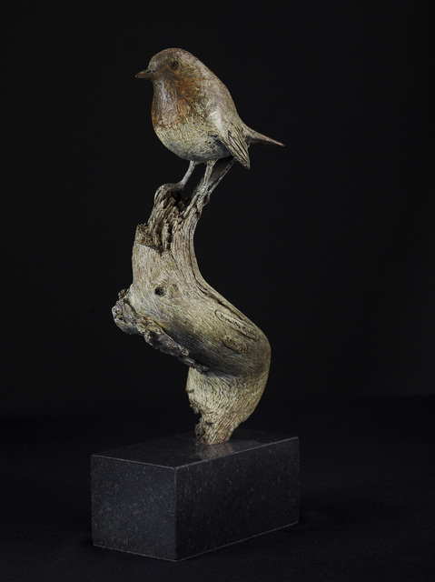 , 'Robin ,' 2015, Candida Stevens