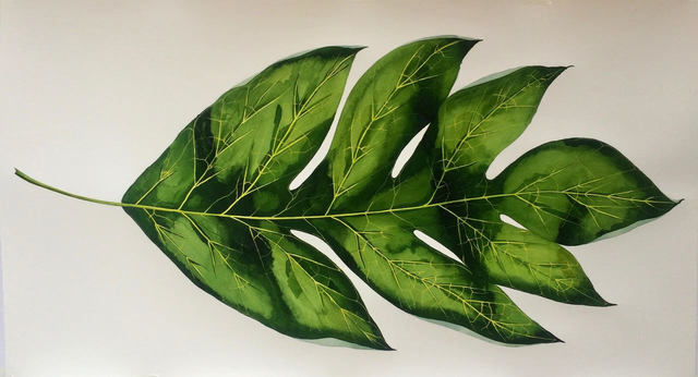 , 'Big Breadfruit Leaf,' 2019, ARC Fine Art LLC