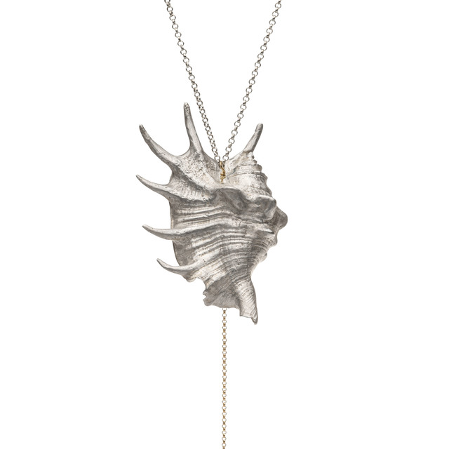 , 'Shell (Spider Conch),' 2014, Elisabetta Cipriani
