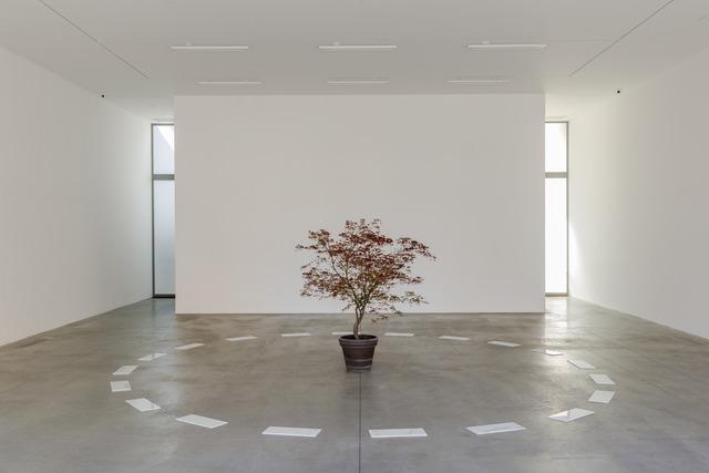 , 'Segnalamento,' 2014, Lia Rumma