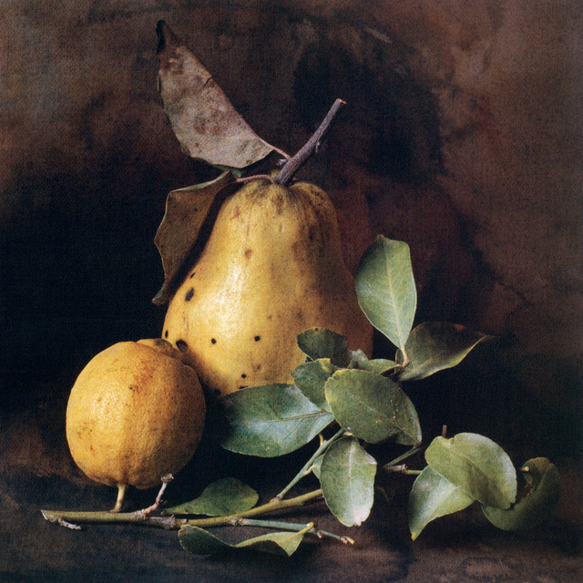 , 'Autumn Quince and Lemon ,' , Gallery 270