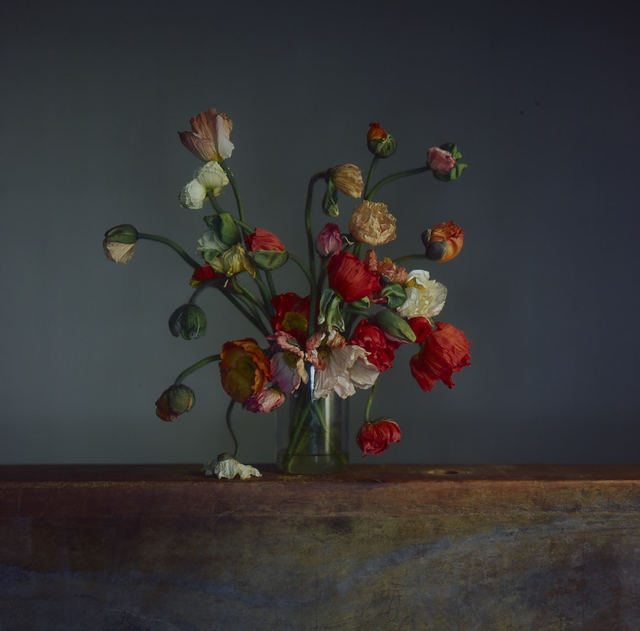 Richard Learoyd, 'Flowers, Day 1', 2019, Pace/MacGill Gallery