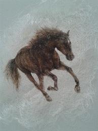 , 'wild horse,' , Galeri Selvin