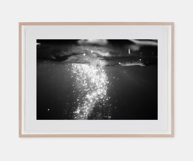 , 'Evening Dive,' 2016, A.I. Gallery
