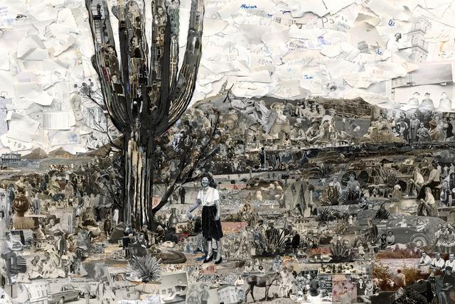 , 'Album: Sonora,' 2014, Galeria Nara Roesler