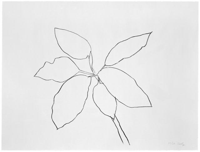 Ellsworth Kelly, 'St. Martin Tropical Plant', 1981, Gemini G.E.L. at Joni Moisant Weyl