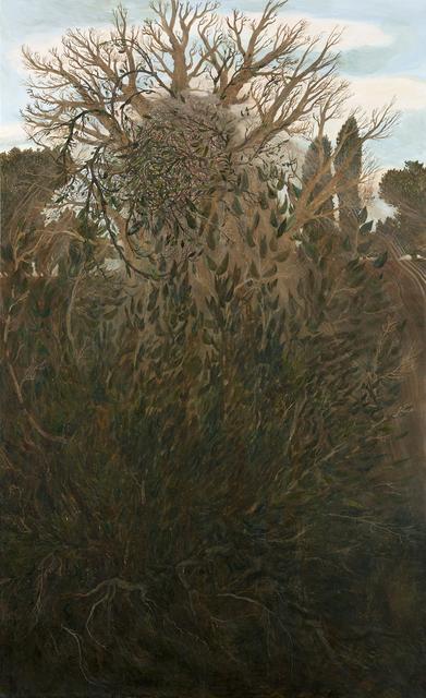 , 'Ascete,' 2018, Galerie Anhava