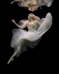 White Swan 01