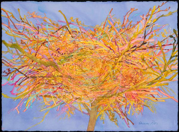 Sharon Pitts, 'Nest, Swirl', 2016, Imlay Gallery