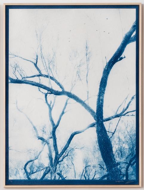 , 'Dream in Blue 4,' 2019, Litvak Contemporary