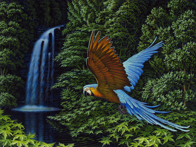 , 'Blue and Gold Macaw,' 2012, Bernarducci Meisel Gallery