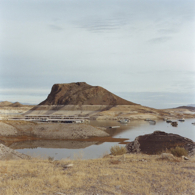 , 'Elephant, from the series Truth or Consequences ,' 2012, NextLevel Galerie
