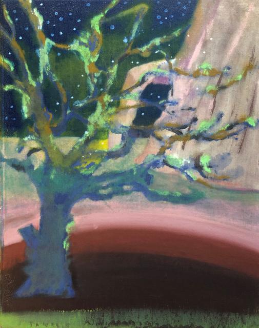, 'Squat Oak,' 2018, Tatha Gallery
