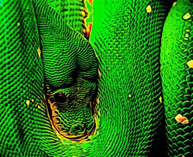 , 'Snake,' 2016, Agora Gallery