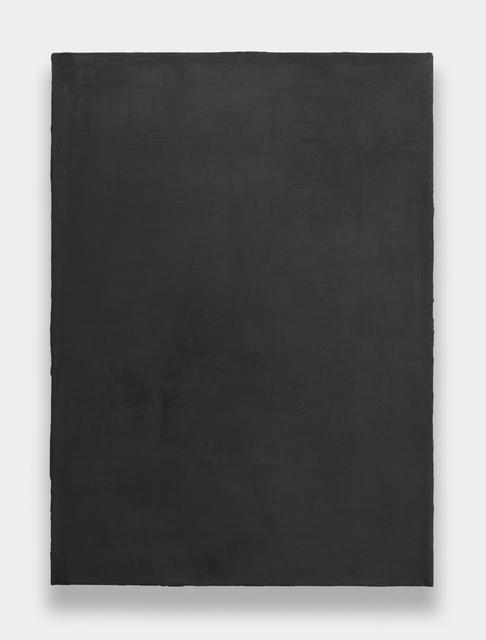 , 'NGS C3,' 2009, Rhona Hoffman Gallery