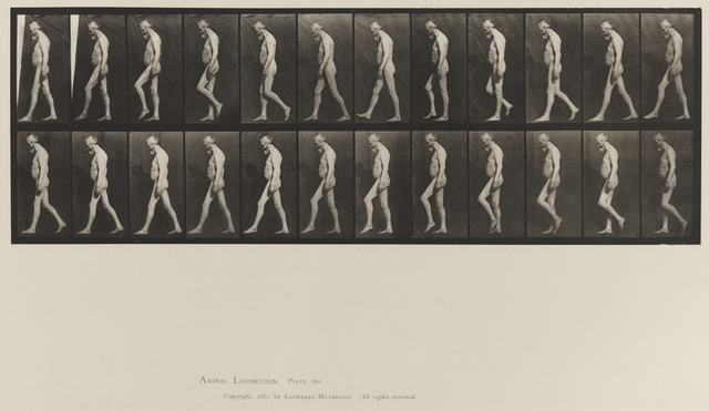 , 'Plate 555. Muscular atrophy of legs; A, B, walking.,' 1887, Laurence Miller Gallery
