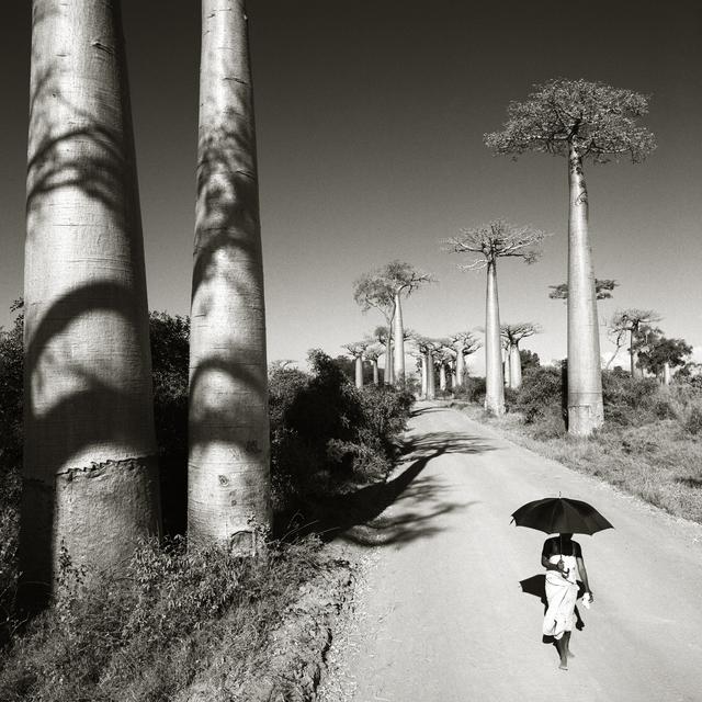 Chris Simpson, 'Woman with Umbrella Madagascar', 1997, Atlas Gallery
