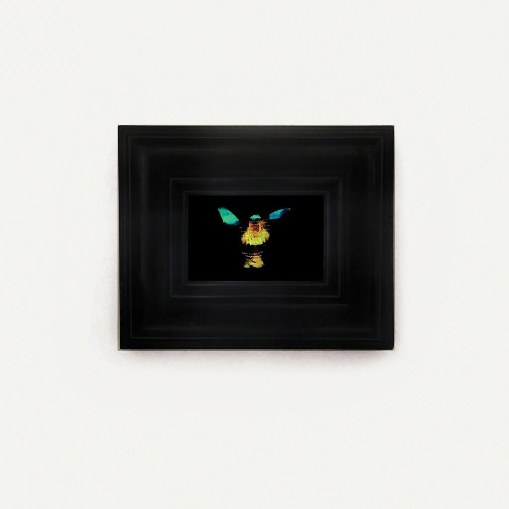 https://www artsy net/artwork/bran-symondson-for-everything