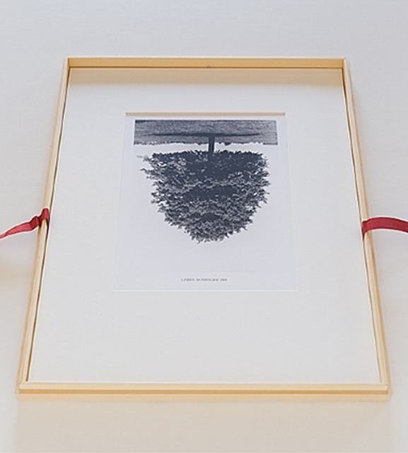 Rodney Graham, 'Flanders Trees', 1990, Caviar20