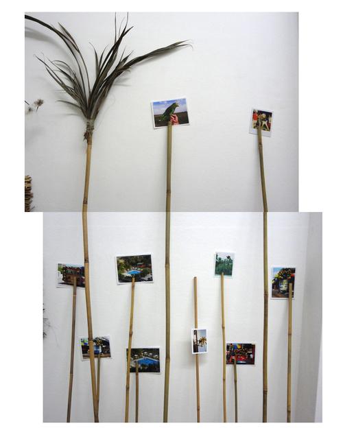, 'El radiante Pendón,' 2013, Carmen Araujo Arte