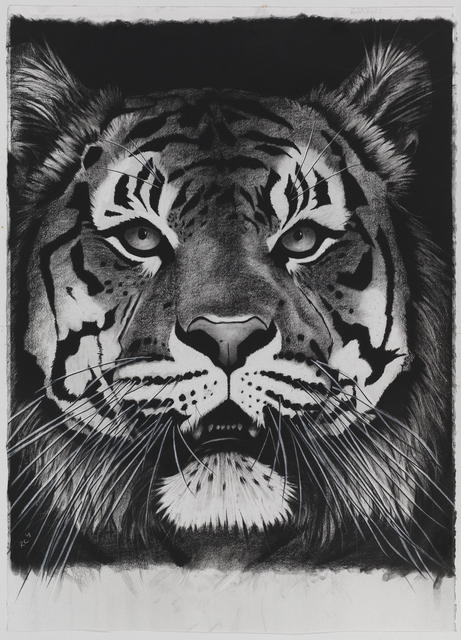 , 'Tiger on Black Mouth Open,' , Sladmore Contemporary