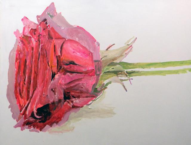 , 'Duas Rosas Deitadas,' 2017, Galeria Marilia Razuk