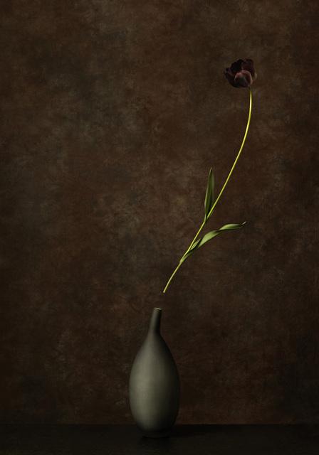 , 'Black Jack,' 2014, SmithDavidson Gallery